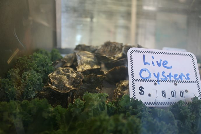 Photograph of oysters and kale